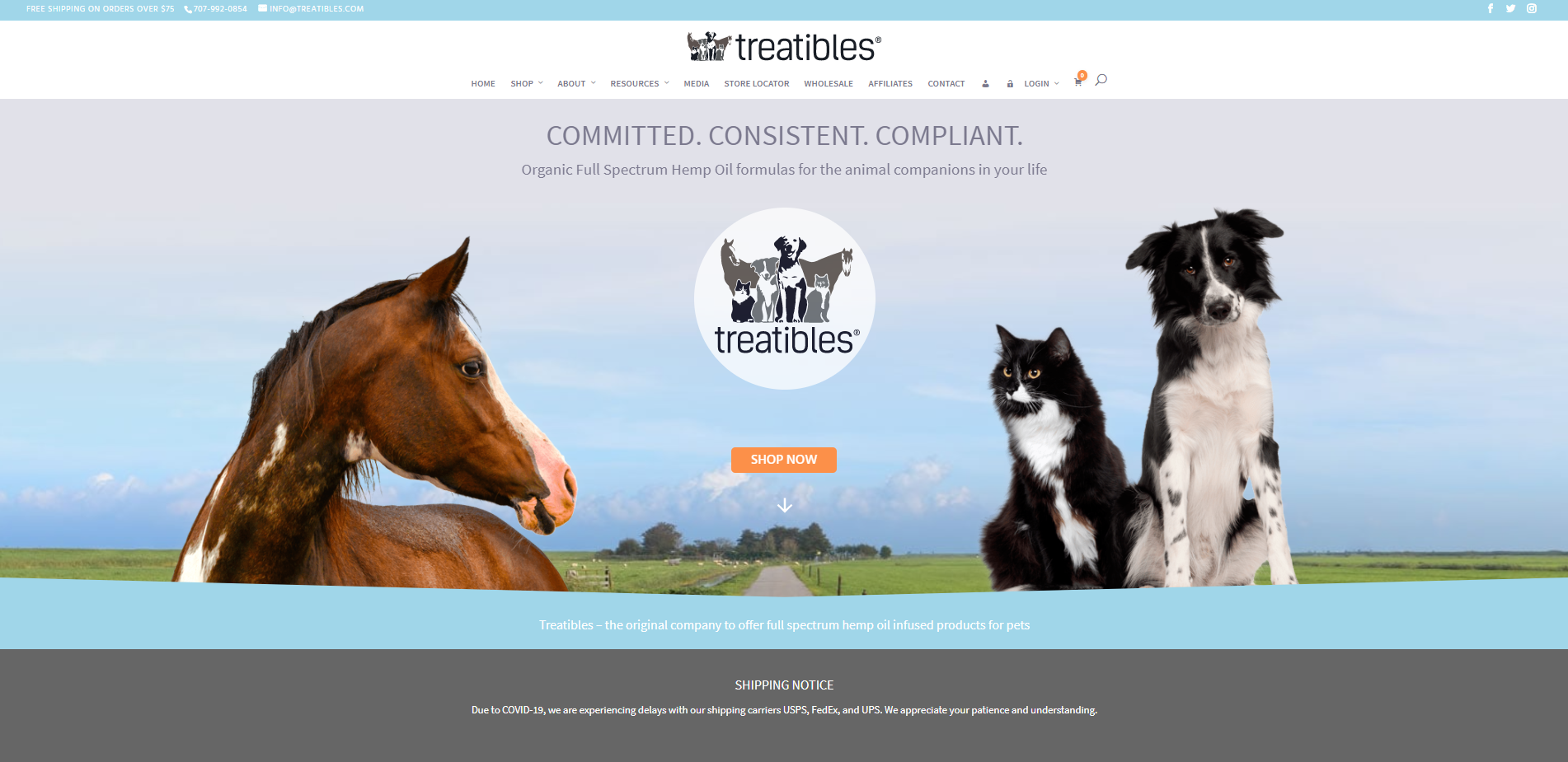 treatibles portfolio website
