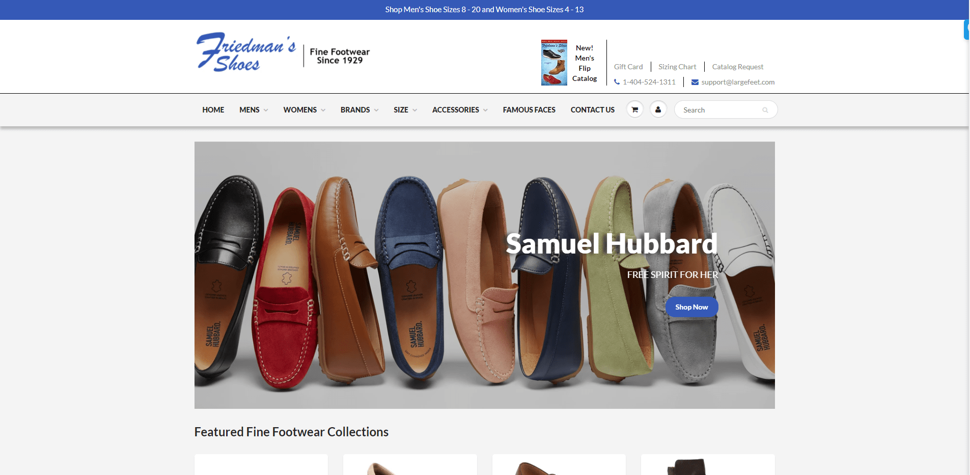 friedmans shoes portfolio website
